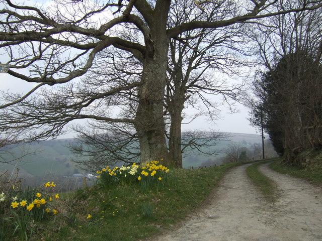 Road to Pen-twyn
