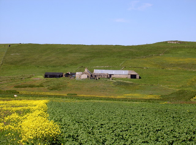 Farm of Hammers, Westside Westray