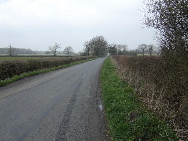 Mapleridge Lane
