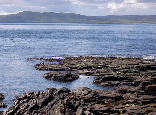 Westray Firth