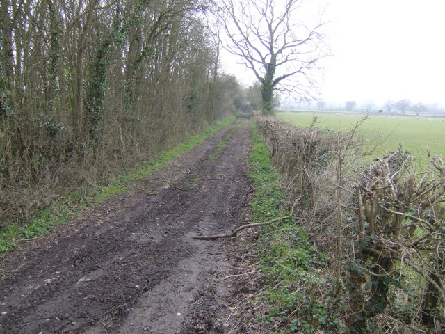 Track at the end of Lark's Lane