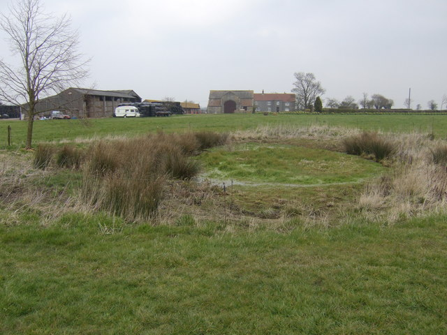 Dried-up pond at Angers Farm
