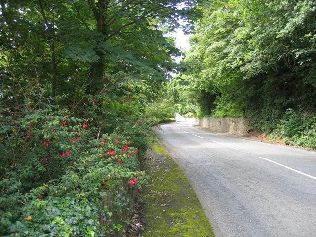 Beaumaris Road near Garth Lodge