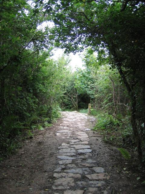 The Anglesey Coastal Path near Trwyn-du #2