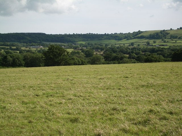 Pasture, looking South towards Batcombe Hill