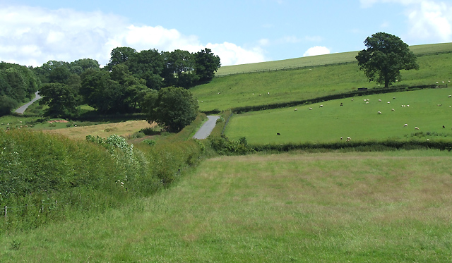 Grazing Land and the Lane to Ditton Priors, Shropshire