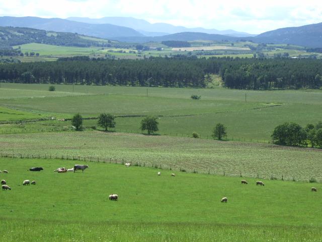 View towards Lochnagar