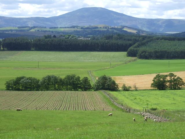 View towards Morven