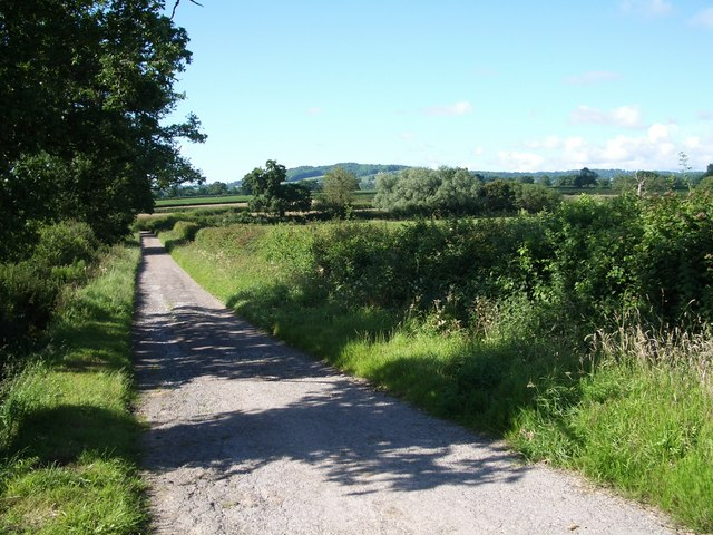 'Back Lane', between Leigh and Yetminster