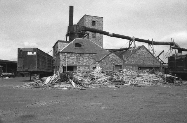 Matthew, Wright & Nephew, Irvine Sawmills