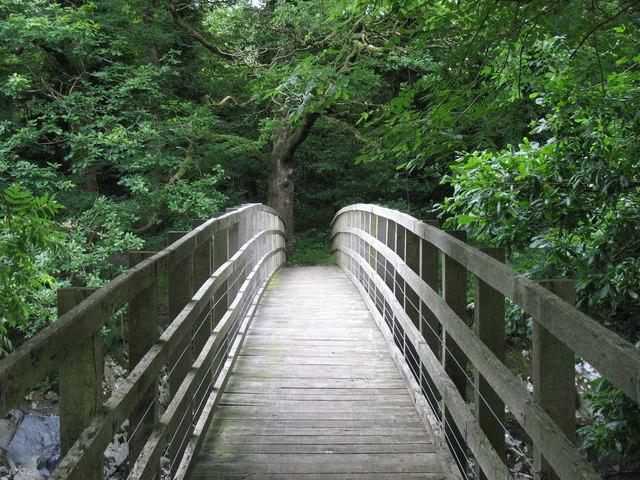 Pontdroed Y Ganllwyd Footbridge