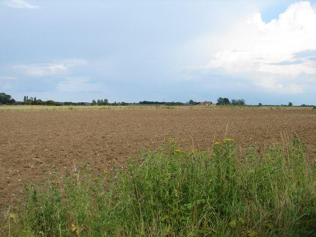 Looking towards North Hills Farm