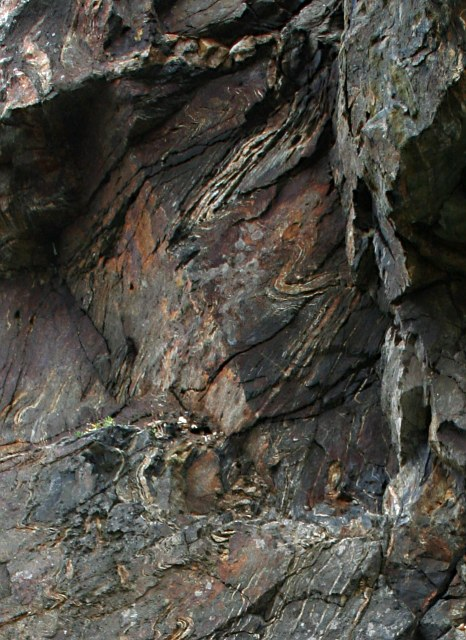 Contorted Rock Strata on the Cliff Face