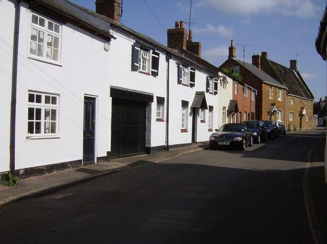 Sutton Street, Flore