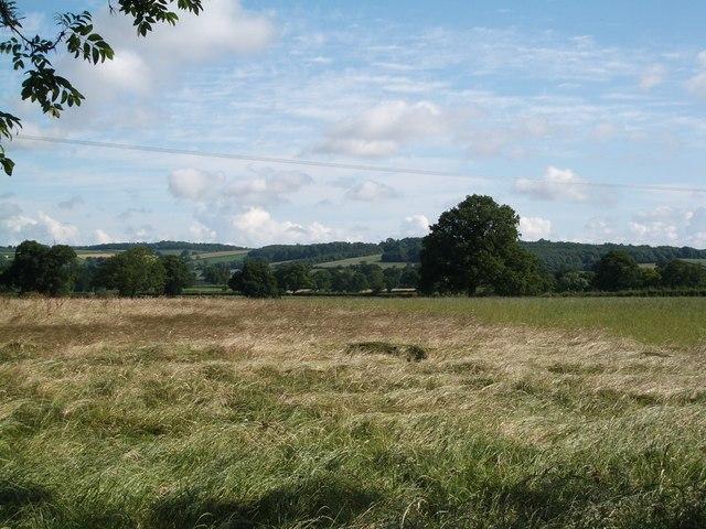 Farmland below Bailey Ridge Farm