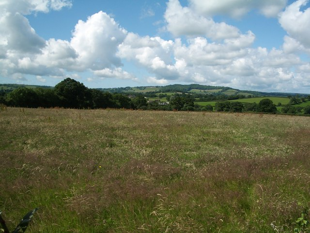 Farmland view at Totnell Corner, south west towards Melbury Bubb