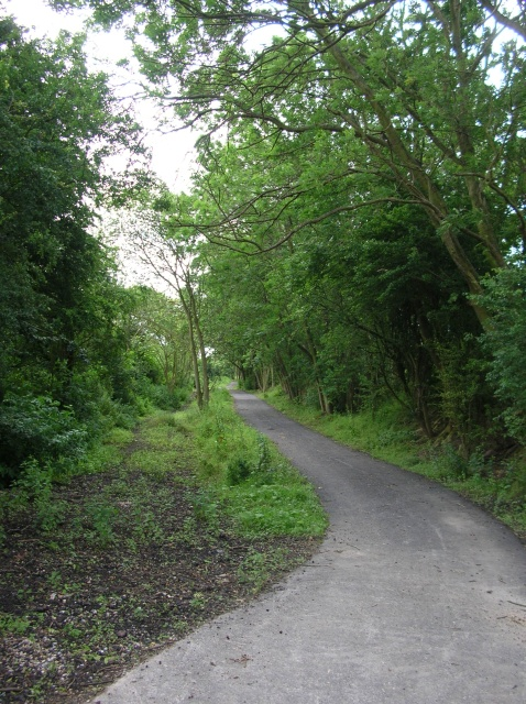 Harland Way extension