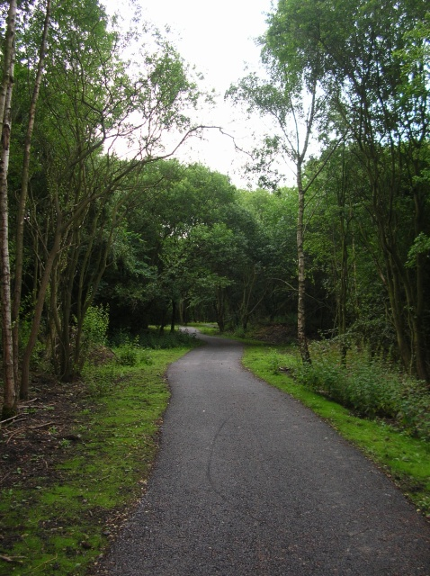 Harland Way near Thorp Arch