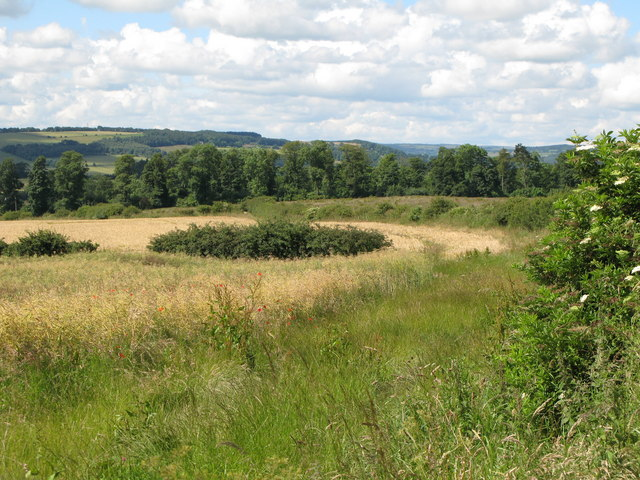 Arable land and woods west of Newton