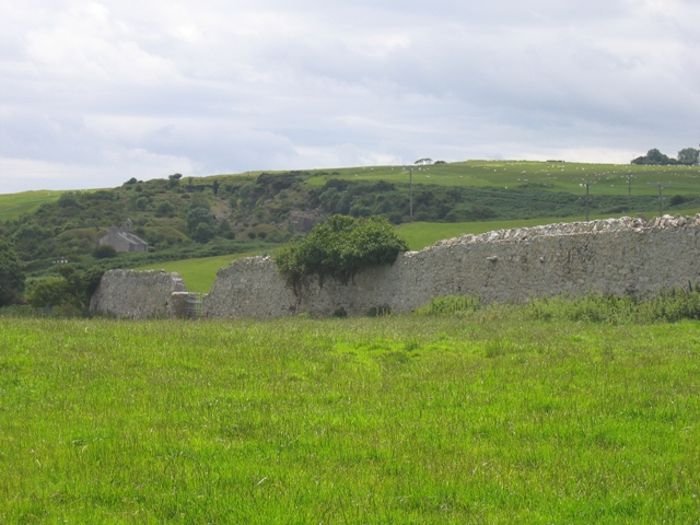 Pasture and Deer Park Wall