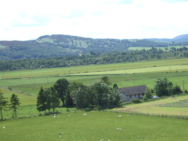 View SE from near Titaboutie