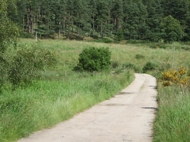 Track to Coull House Farm