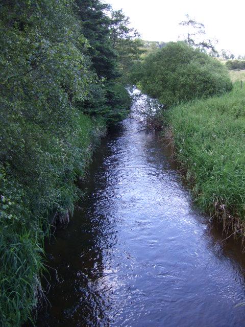Upstream Tarland Burn