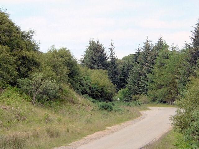 Surprisingly narrow A class road along hillside