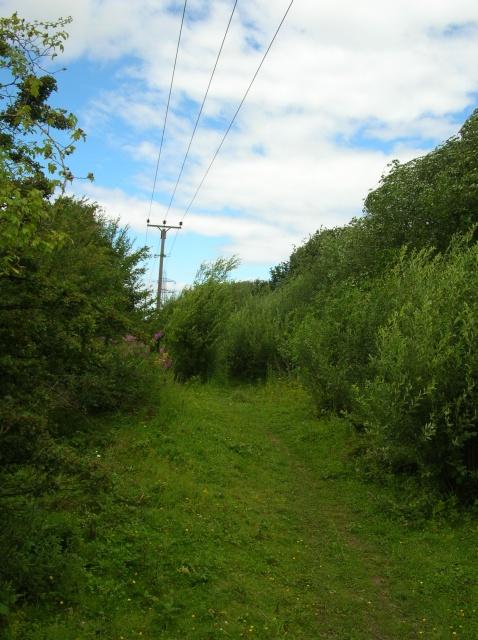 Footpath near Thorp Arch