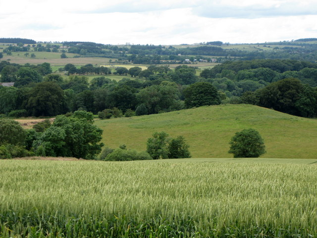 Arable land, hill 150 and Wooley Wood