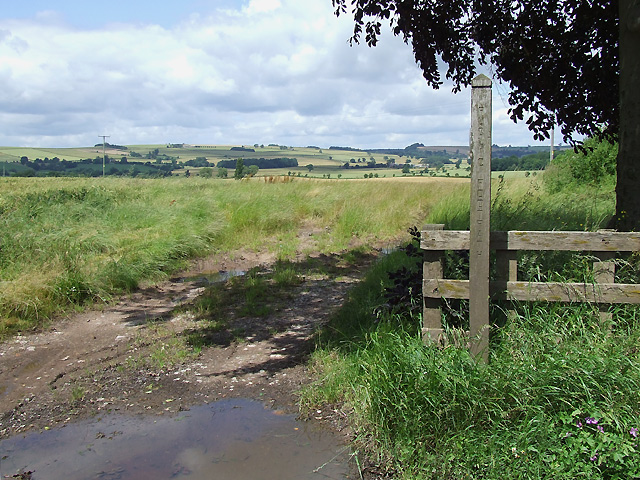 Footpath and Fields, Weston, Shropshire