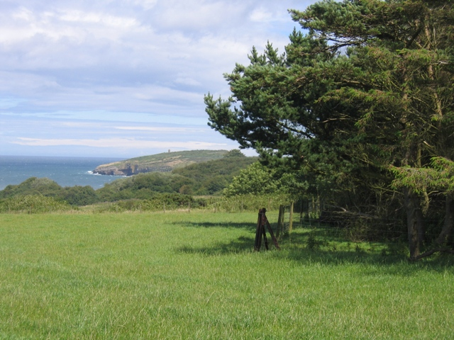 View across Dinmor Park towards Puffin Island