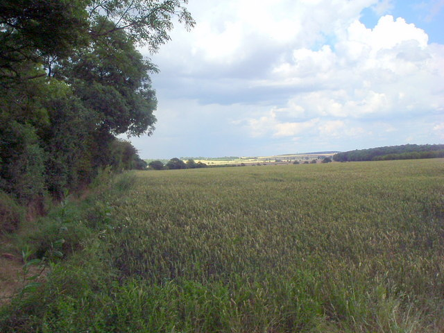 View toward Winwick hill