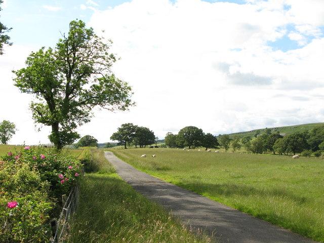 Pastures near Billerley