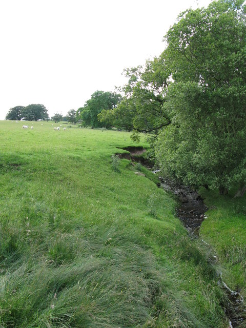 Small burn below Ealingham farm