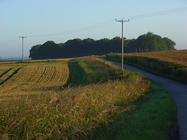 Farm road, Winterbourne Stoke
