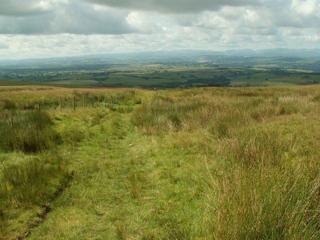 The Track on to Thack Moor