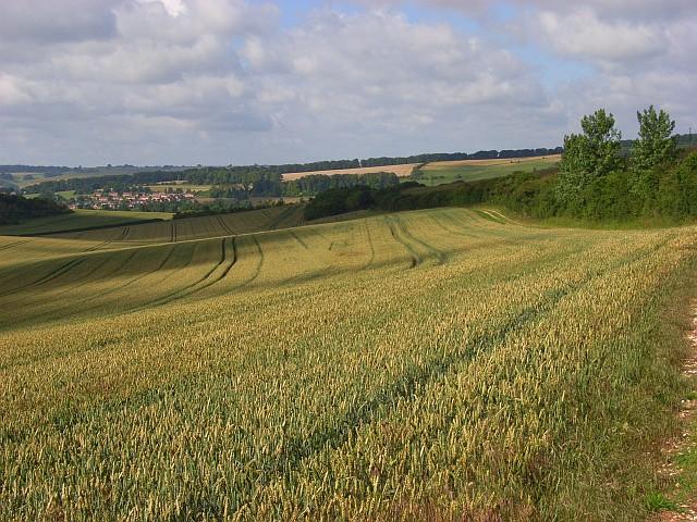 Farmland, South Newton