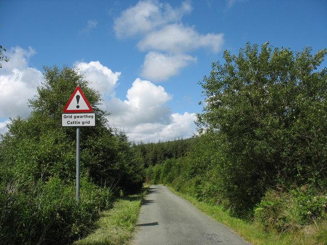 Approaching the Mynydd Gwynfynydd Forest cattle grid