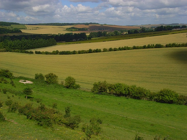Farmland, Chilhampton