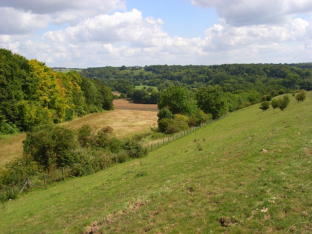 Downland and woods, Woodford