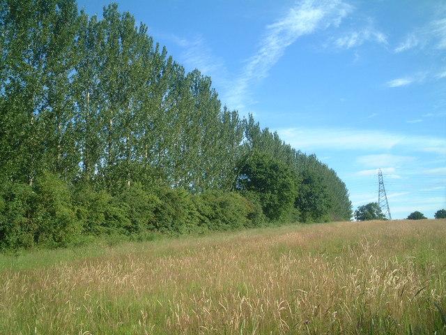 Footpath from Truemans Heath to Highters Heath