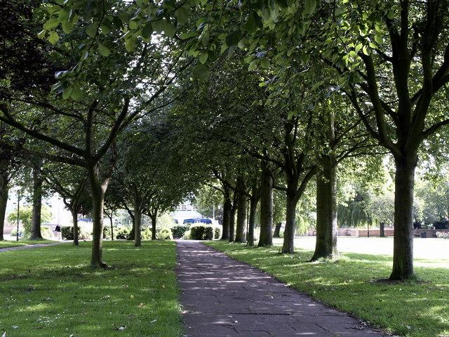 Tree Avenue in Queen's Gardens