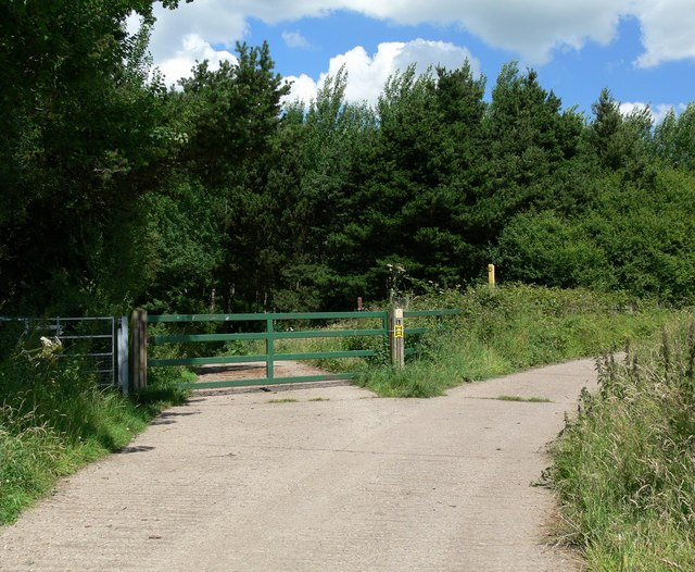 Entrance to Martinshaw Wood