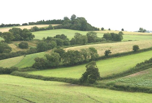 Near Timsbury