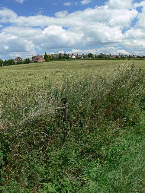 Farmland near Ratby
