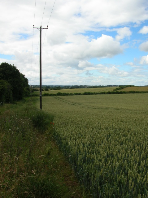Farmland along the Harland Way