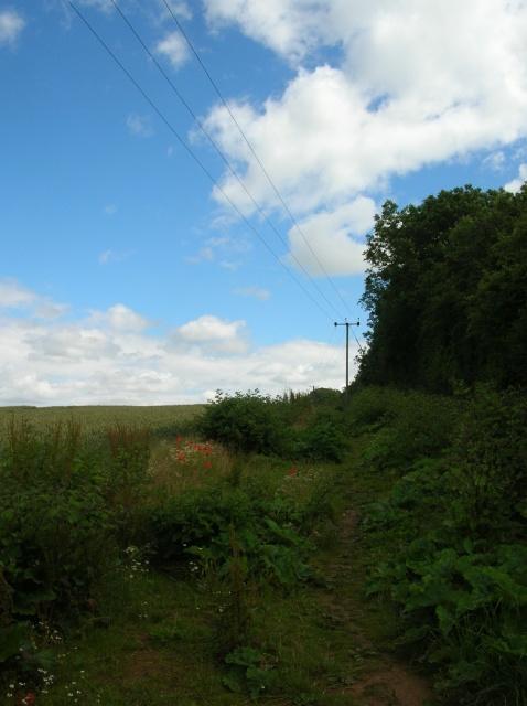 Footpath to Kirk Deighton