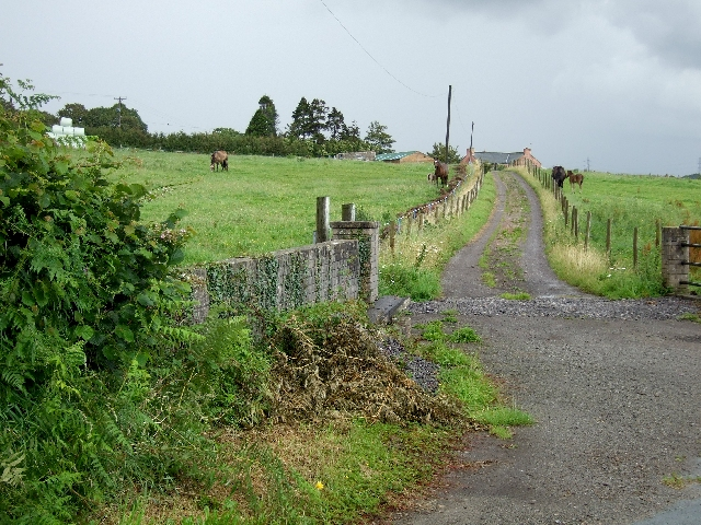 Llwyn Drain Farm, Ystradowen