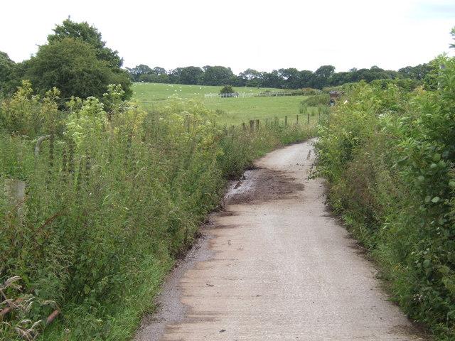 Farm road near Crooke Cross